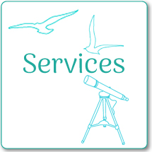 speech therapy Services Link